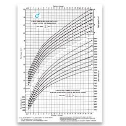 Fejlődési lap 0-2 éves korig (fiú) A/4 álló