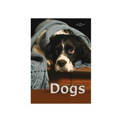 Füzet pd kisalakú 14-32 vonalas Dogs III.
