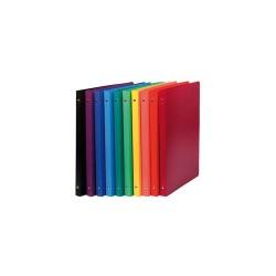 Gyűrűs könyv Exacompta Opaque A/4 4 gyűrűs 20 mm gerinccel PP vegyes színek