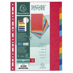 Elválasztólap karton Exacompta A/4 12 részes színes 225 g