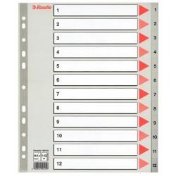 Regiszter PP Esselte A/4 1-12-ig szürke maxi 100125