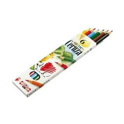 Színes ceruza Ico Süni 6 db-os klt.