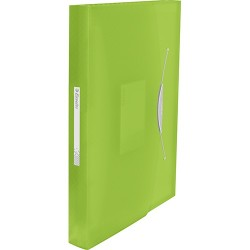 Harmonika irattartó Esselte Vivida PP, zöld
