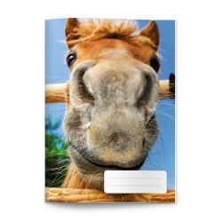 Füzet pd kisalakú 20-32 sima bámu-ló
