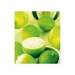 Szalvéta 33 x 33 cm 3 rétegű Lime