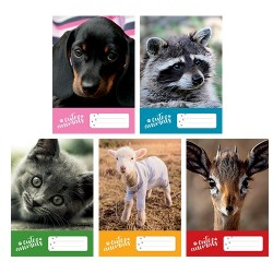 Füzet pd kisalakú 21-32 vonalas Cute Animals vegyes