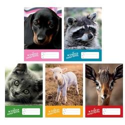 Füzet pd kisalakú 27-32 kockás Cute Animals vegyes