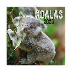 Naptár fali Realsystem 6097 lemez 30x30 cm Koalas